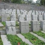 Barbarzyńskie zniszczenia cmentarza naRosie wWilnie 12