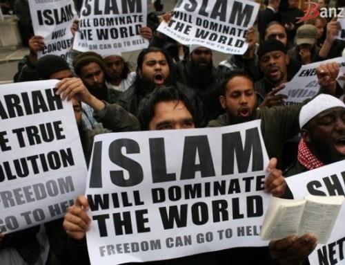 Islamofobia wgliberalnych demokratów