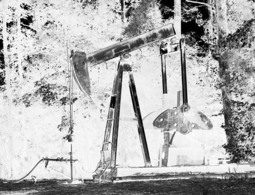 Afera paliwowa: ktoś niszczy Danutę Gaszewską (3)