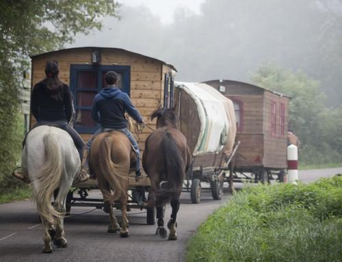 Polscy Romowie – żywot mniejszości etnicznej