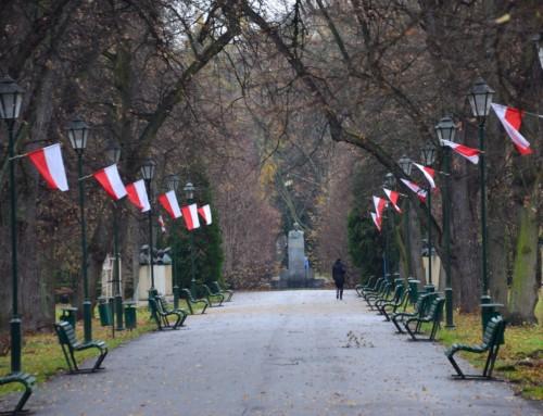 Krakowska frakcja antypolska  wdziałaniu na100 rocznicę  odzyskania przezPolskę niepodległości